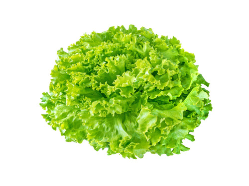 Batavia Salat